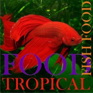 Tropical Fish Food (1)